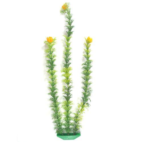 Planta de decoração para aquario