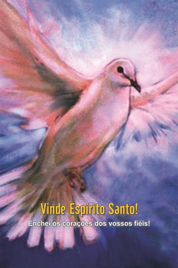 Santinhos do Espírito Santo - Milheiro  - Ruah Artigos Católicos