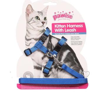 Peitoral Pawise com Guia Azul para Gatos