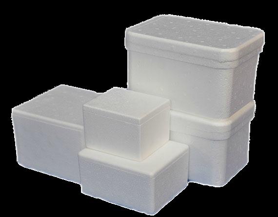 Caixa de Isopor Térmica - Tamanhos