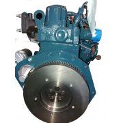 Motor Kubota Diesel