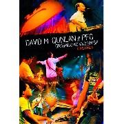 DVD - David M. Quinlan//PFG -Gravado ao vivo em São Paulo - Coletânea