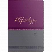 Bíblia de Estudo Arqueológica