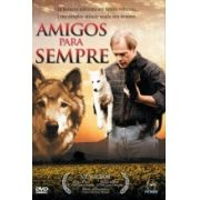 DVD - Amigos para Sempre - Filme