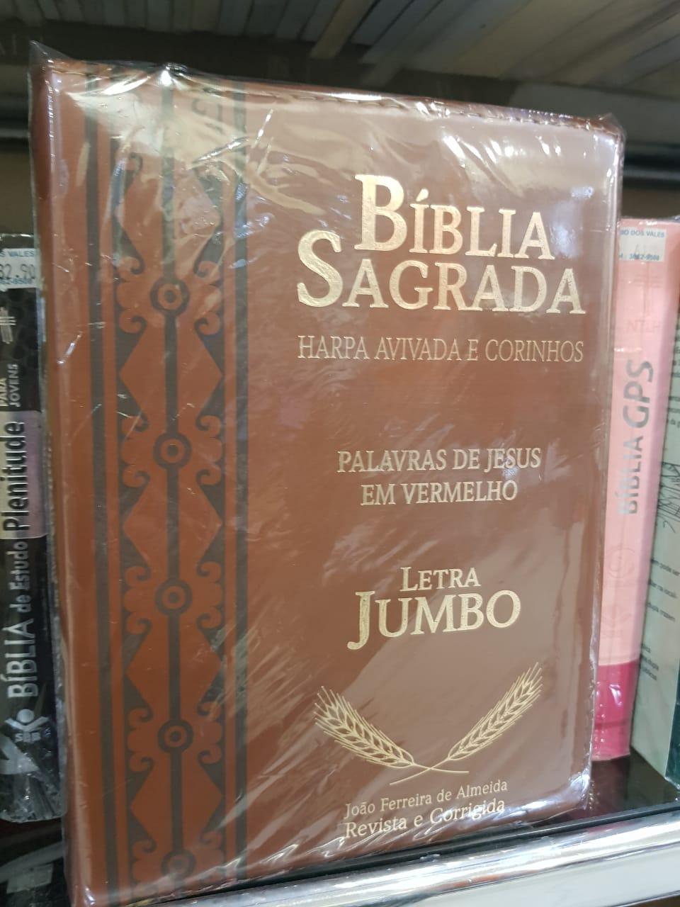Bíblia letra jumbo com zíper