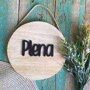 Placa Plena