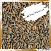 MALTE DE CENTEIO (RYE) - VIKING (7,7 EBC) 1 Kilo