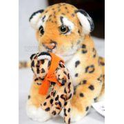 Leopardo e Filhote - 175075