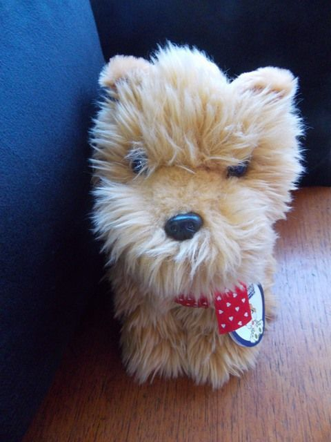Cachorro Beijinho - 239389