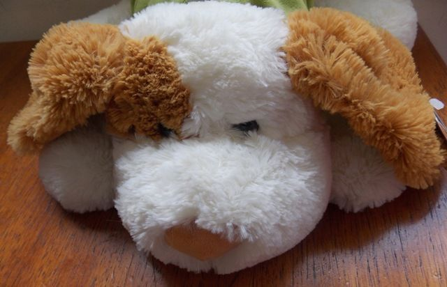 Cão Amigo - 324454