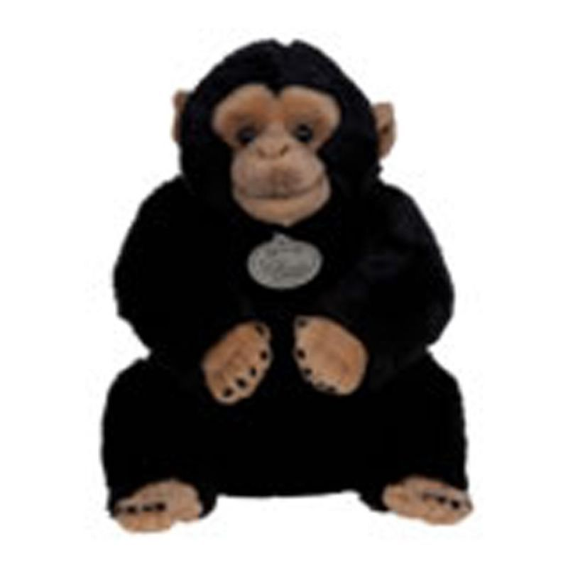 Macaco Aranha  - 281769