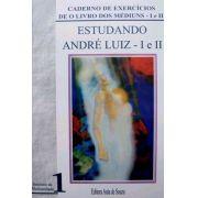 ESTUDANDO ANDRÉ LUIZ I E II