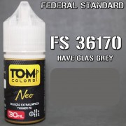 FS 36170 Have Glass Grey