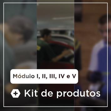 Curso Completo DryWash - M�dulos, I, II, III, IV e V + Kit de Produtos