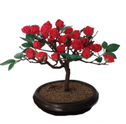 Bonsai Artificial Flor Vermelha