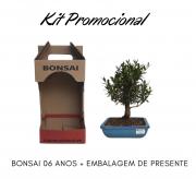 Kit Promocional Bonsai de 06 anos + Embalagem de presente