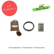 Kit Promocional Plantio I