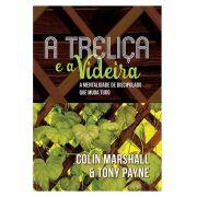 A Treliça e a Videira A Mentalidade de Discipulado que Muda Tudo  TONY PAYNE , COLIN MARSHALL