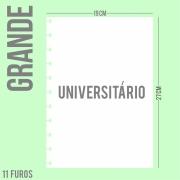 Refil de folha Universitário Para Cadernos de Disco Sistema Inteligente - Grande