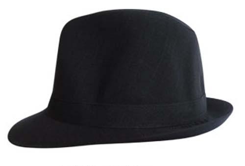 Chapéu Modelo Fedora