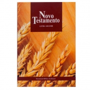 Bíblia Novo Testamento | NTLH | Brochura | Bege