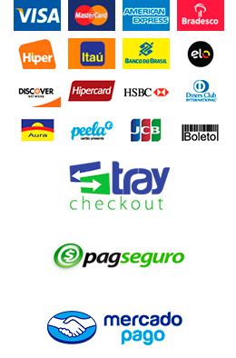 Imagem com as bandeiras e formas de pagamento