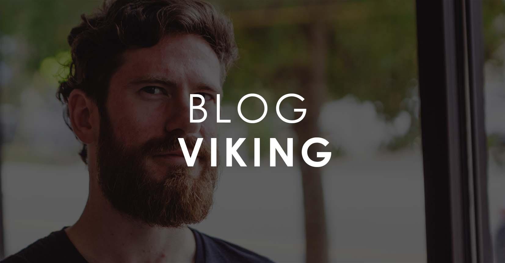 Blog Viking