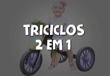 Tricículos 2 em 1