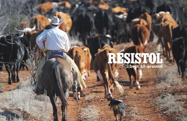 Loja Cowboys - Moda Country c2eff1f797f