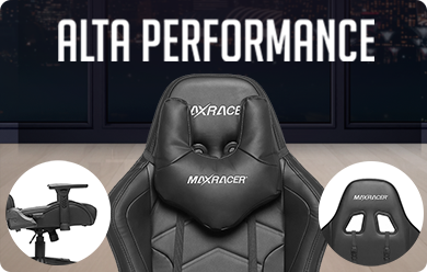 Alta Performance MaxRacer