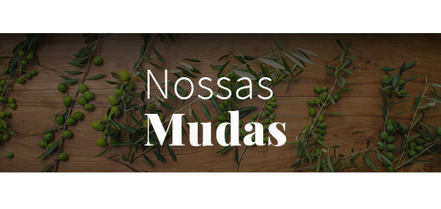 Banner mudas