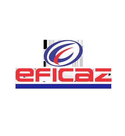Logo Eficaz ERP