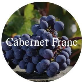 vinhos?loja=1022248&categoria=1&prices=0%252C4819&variants%5B%5D=Uva%7C%7CCabernet+Franc