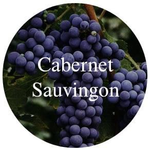 vinhos?loja=1022248&categoria=1&prices=0%252C1713&variants%5B%5D=Uva%7C%7CCabernet+Sauvignon