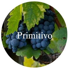 Vinhos/primitivo