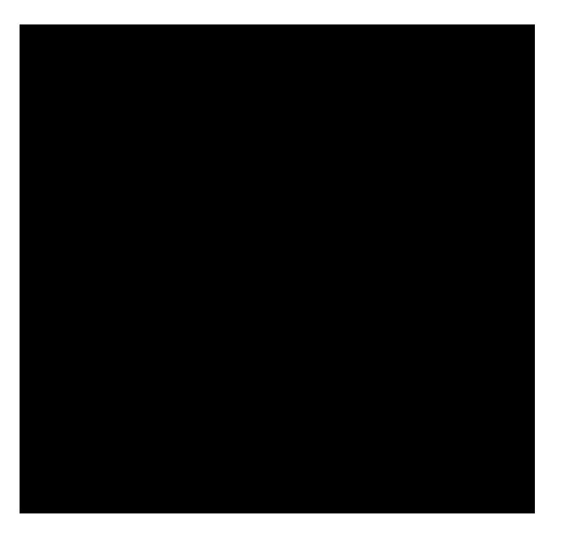 MALFEITONA