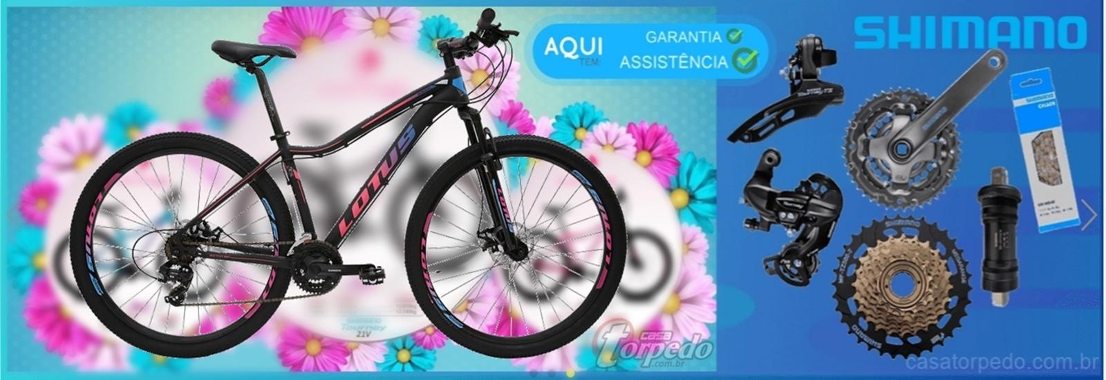 Super Preço! Bicicleta LOTUS ANGEL aro 29 - quadro garantia vitalicia