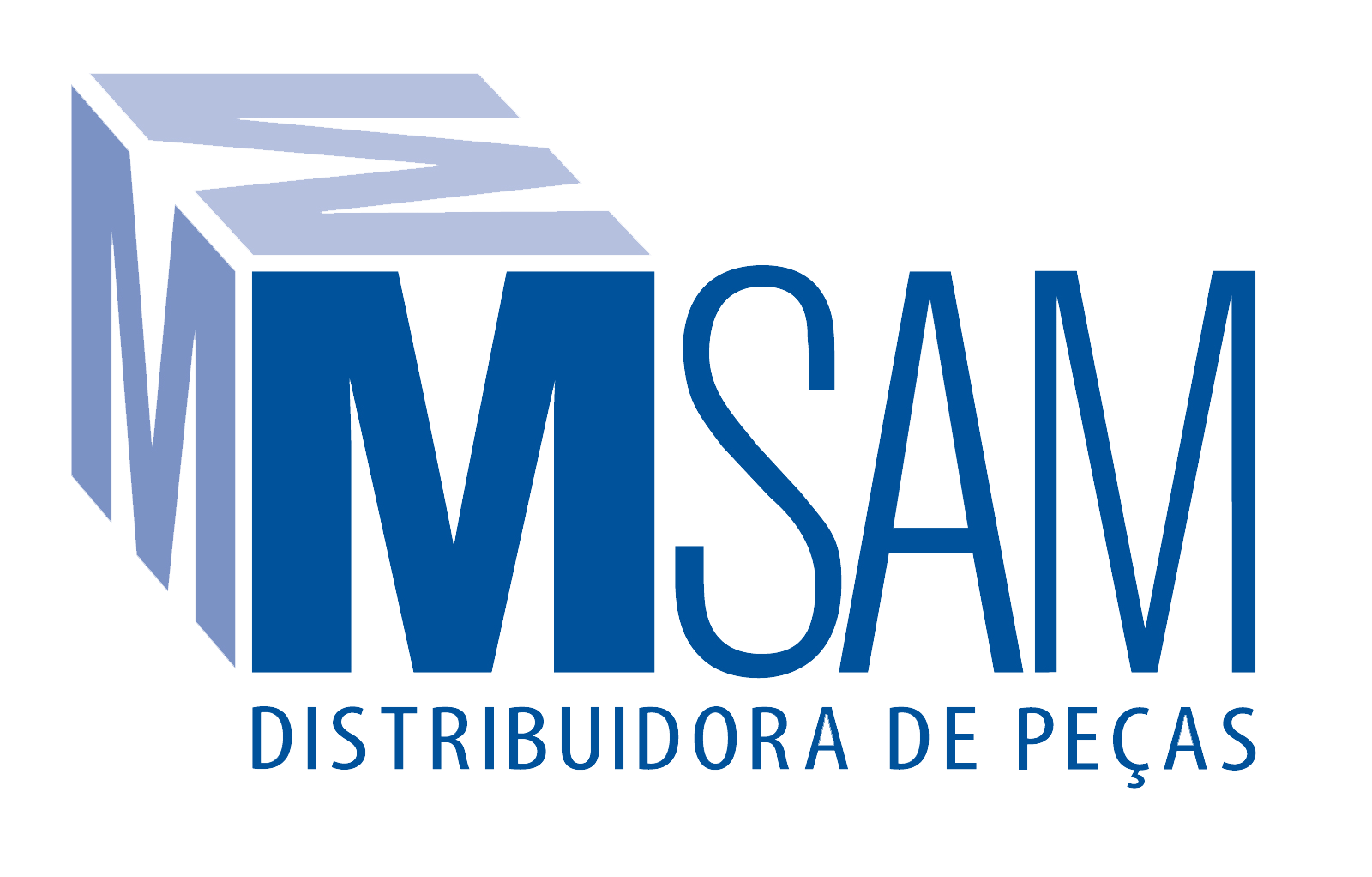 MSAM Distribuidora de Peças para Caminhões e Ônibus