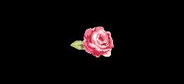 Logo da Dona Rosa Acessórios