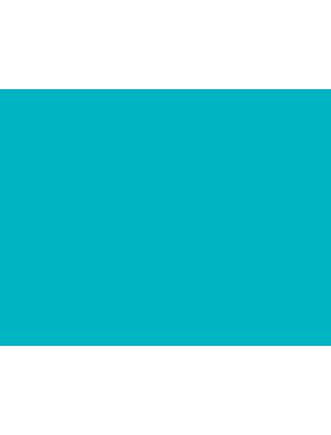 Abacaxiclub