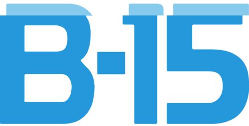 Logo B15
