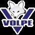 Logo ERP Volpe
