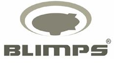 BLIMPS COMÉRCIO ELETRÔNICO