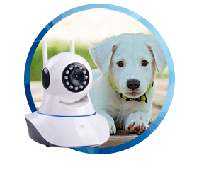 camera-pet-ip-sem-fio-wifi-hd-720p-robo-wireless-com-audio-grava-em-cartao-sd-com-2-antenas-e-visao-noturna-01