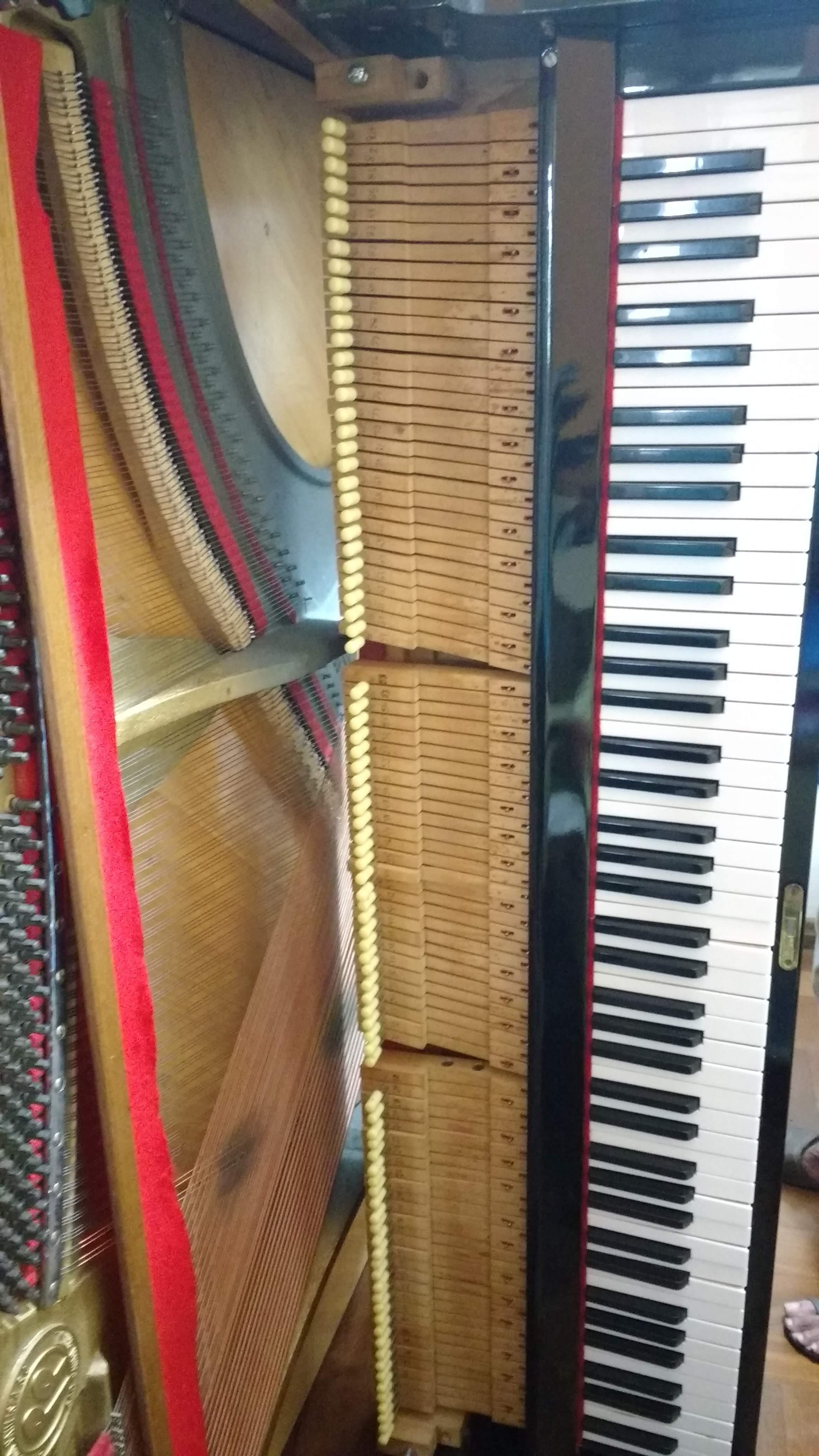 aulas de musica jf contato escola de musica luciane borges professora de teclado 32-3223-8063 @lucianetecladista