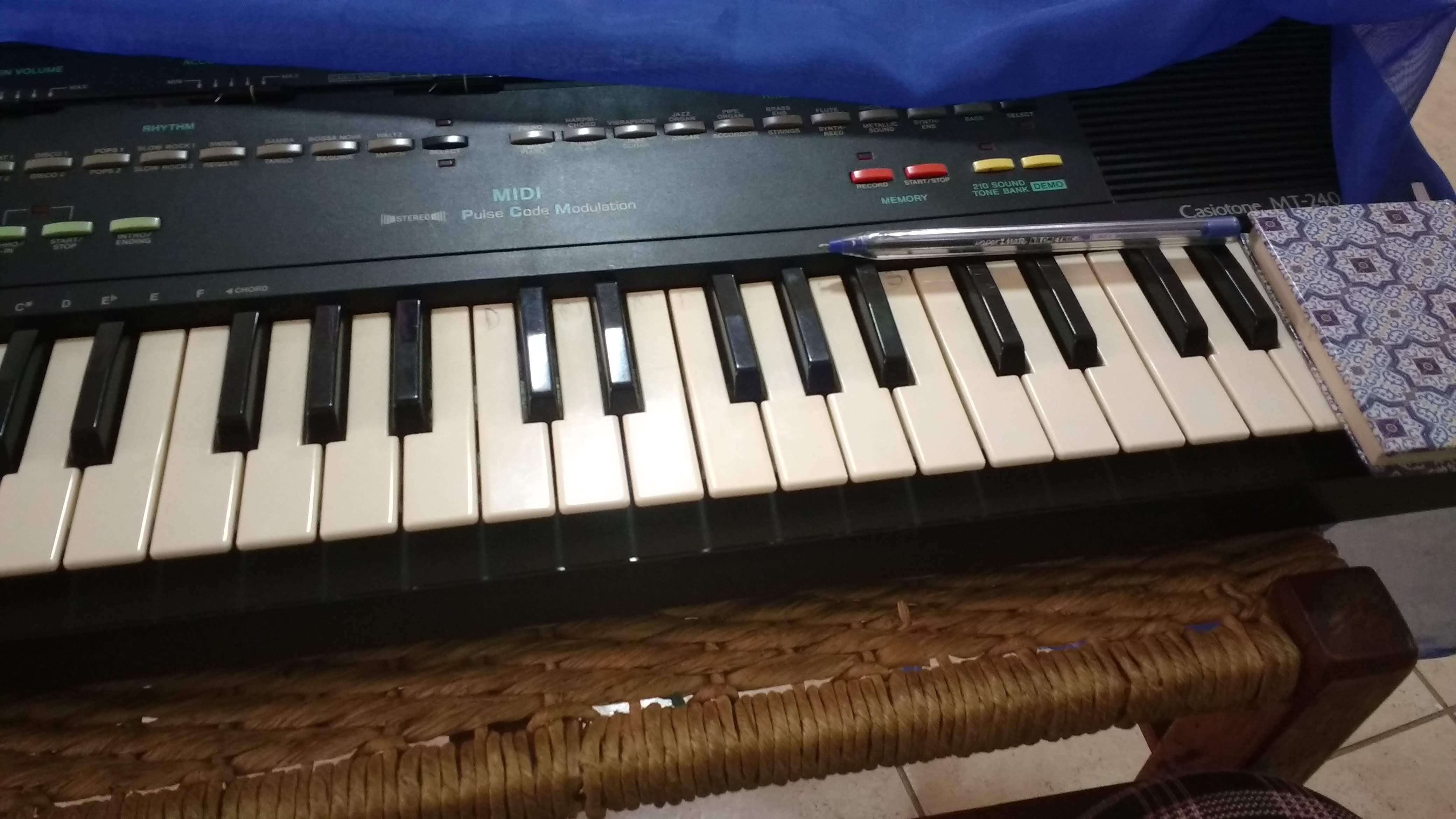 luciane borges professor de teclado particular, aula de piano jf, aulas de teclado preço,