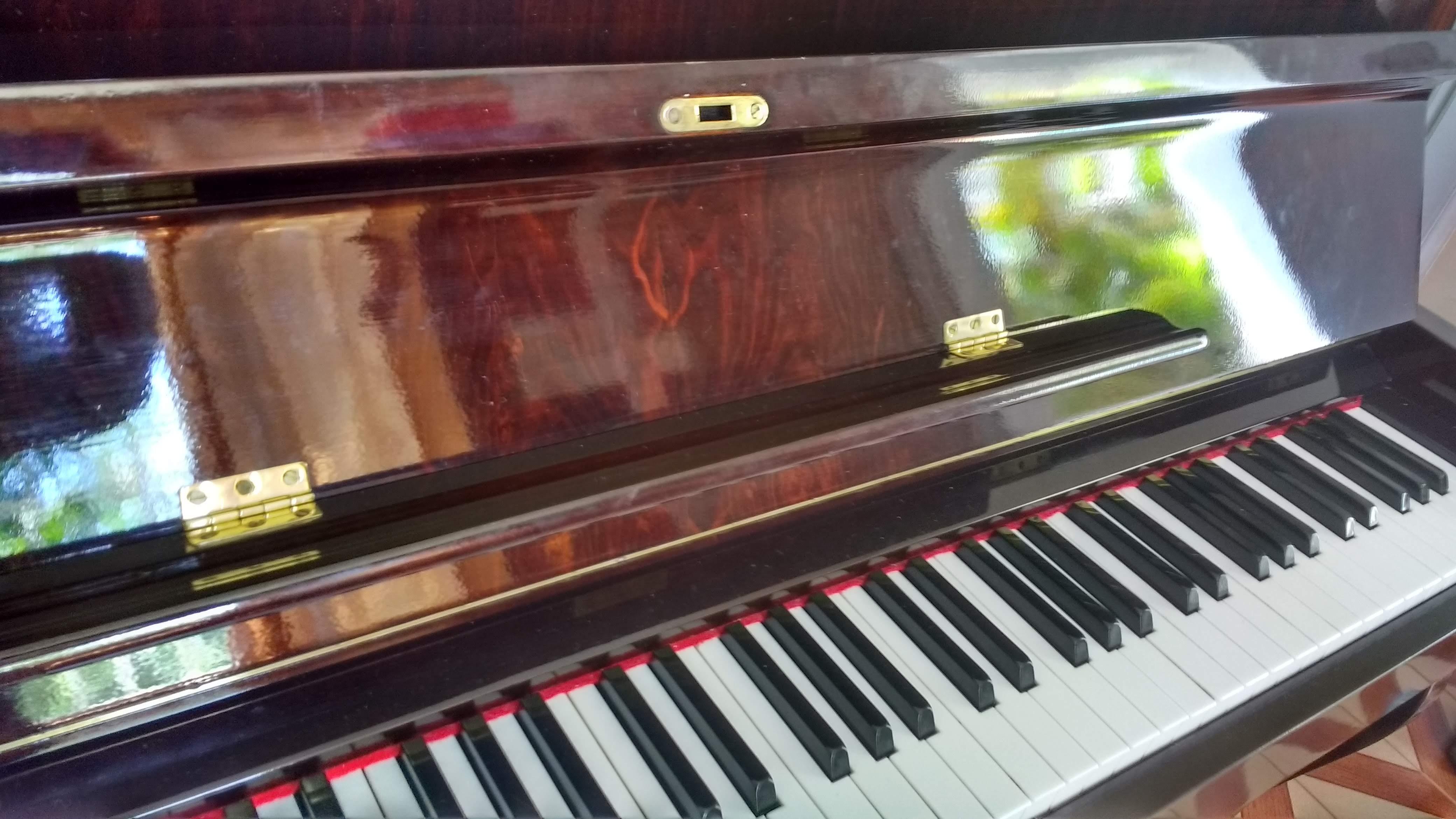 juiz de fora luciane borges aulas particulares de teclado, Tocar de ouvido e por partitura,