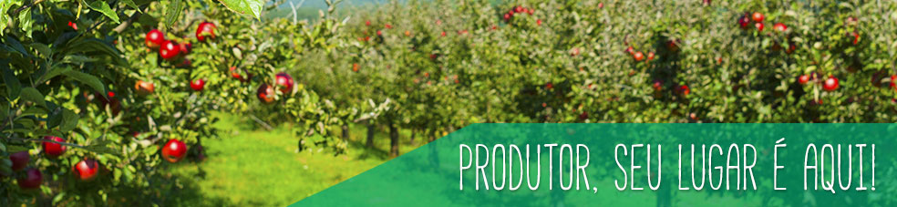 mudas-frutiferas-para-produtor-rural