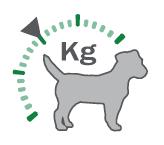 Controle do peso para cães castrados