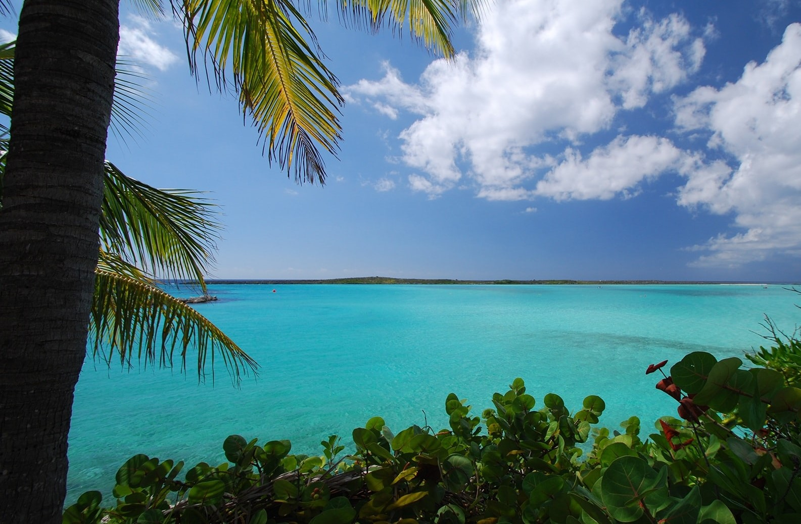 cor verde mar do caribe